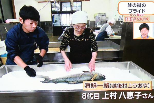 脂ののったオスが塩引鮭に