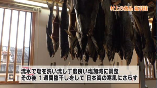 日本海の塩気と三面川の湿気を含んだ風でゆっくりと乾燥させることによりうまみが熟成され独特の風味が生み出されるのです